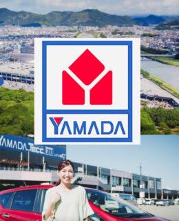ヤマダ電機TeccLand TVCM/PV<br>work / モデル,カメラマン